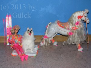 Ski Fun Barbie, dog Snowball and horse Blizzard